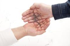 Deux mains et pointeaux Image stock