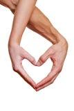 Deux mains formant la forme de coeur Photo libre de droits