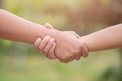 Deux mains liant Concept d'aide ou de soutien Sur le bl vert Photos stock