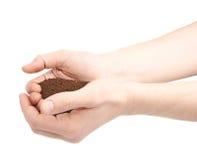 Deux mains tenant une poignée de sol moulu Image libre de droits