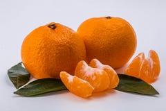 Deux mandarines sur le fond blanc Image libre de droits