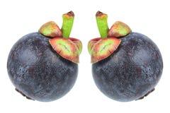 Deux mangoustans d'isolement sur le blanc Photo libre de droits