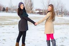 Deux meilleurs amis marchant ensemble dans la neige Photographie stock libre de droits