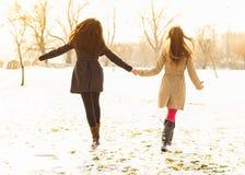 Deux meilleurs amis marchant ensemble dans la neige Image libre de droits