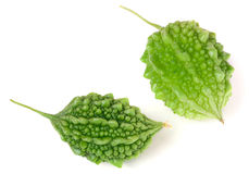 Deux melon ou momordica amer vert d'isolement sur le fond blanc Images stock