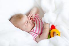 Deux mois adorables mignons de bébé suçant le poing Photographie stock