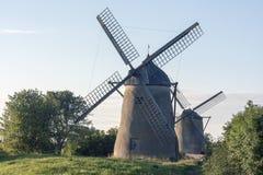 Deux moulins à vent dans un domaine Photo libre de droits