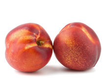 Deux nectarines mûres Photographie stock libre de droits