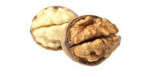 Deux noix de noix Image stock