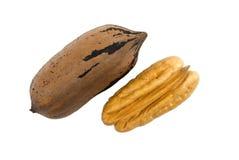 Deux noix de pécan, une écossées Photographie stock libre de droits