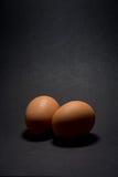 Deux oeufs photographie stock libre de droits