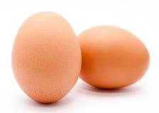 Deux oeufs bruns de poulet d'isolement sur un fond blanc Photo libre de droits