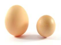 Deux oeufs de poulet Photographie stock