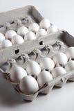 Deux oeufs douzaine blancs à l'intérieur des cartons d'oeufs Photo stock