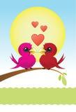 Deux oiseaux d'amour avec des coeurs Images stock