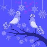 Deux oiseaux de l'hiver dans l'amour Photographie stock libre de droits