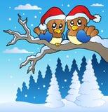 Deux oiseaux mignons avec des chapeaux de Noël Photographie stock