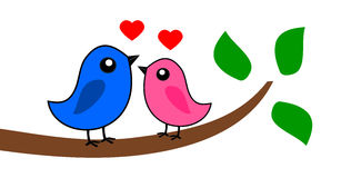 Deux oiseaux qui aiment Images libres de droits