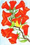 Deux oiseaux sur la branche avec des fleurs Campsis photos stock