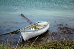 Deux oiseaux sur un bateau dans la baie Photographie stock libre de droits