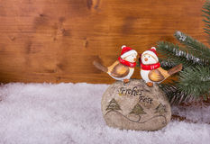 Deux oiseaux sur une pierre avec des souhaits de Noël Photographie stock libre de droits