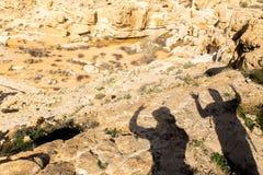 Deux ombres d'amis de touristes de randonneurs sur l'au sol de désert Photo stock