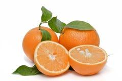 Deux oranges et deux moitiés. Images libres de droits