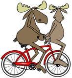Deux orignaux sur un vélo rouge illustration stock