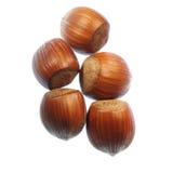 Deux ou trois noix Photos stock