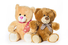 Deux ours de nounours Images stock
