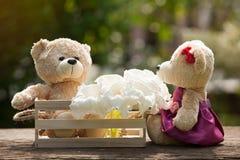 Deux ours de nounours dans l'amour se reposant sur la boîte en bois et le bois Et petit morceau Image libre de droits