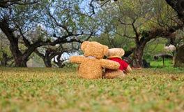 Deux ours de nounours se reposant dans le jardin. Photo libre de droits