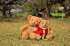 Deux ours de nounours se reposant dans le jardin avec amour. Images libres de droits