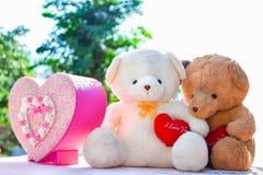 Deux ours de nounours tiennent la séance en forme de coeur sur la table avec le natu Photographie stock libre de droits