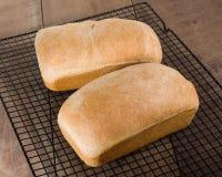 Deux pains de pain cuit au four frais Photos stock