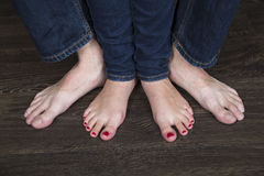 Deux paires de pattes Photo stock