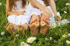 Deux paires de pieds de childs avec des fleurs de marguerite Image stock