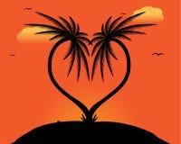 Deux palmiers Images libres de droits