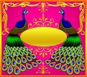 Deux paons avec des ovules de l'or (en) Photographie stock libre de droits
