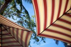 Deux parapluies rayés brillamment colorés de jardin Photos stock