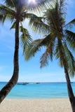 Deux paumes dans un paradis tropical. Plage blanche de sable d'île de Boracay, Philippines Images libres de droits