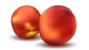 Deux Peaches Close Up Concept sain de régime de nature illustration stock