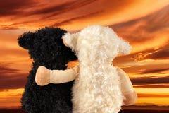Deux peluches mignonnes apprécient le coucher du soleil Images stock