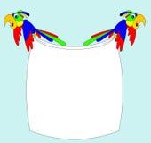 Deux perroquets effrayés Photo libre de droits