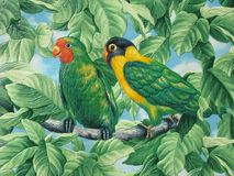 Deux perroquets peints photo stock