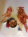 Deux perroquets végétaux - amusement végétal Image libre de droits