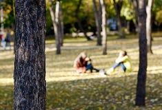 Deux personnes en parc en automne assaisonnent avec le fond de tache floue Image stock