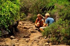 Deux personnes et une tortue de Galapagos image stock
