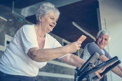 Deux personnes supérieures établissant sur la machine elliptique image libre de droits