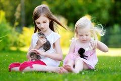 Deux petites filles adorables alimentant de petits chatons avec du lait de chaton de la bouteille Photo stock